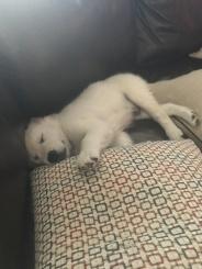 I love my naptime!
